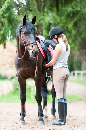 Young teenage girl owner harnessing chestnut stallion at stable place. Colored vertical outdoors summertime image.