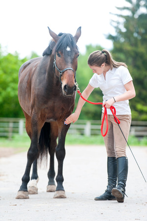 Teenage equestrian girl owner near her bay horse checking for leg injury after sport training. Outdoors vertical colored summertime image.