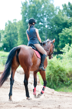 Training process. Young teenage girl riding a horse in forest. Colored outdoors vertical summertime image. View from backside. Stock Photo
