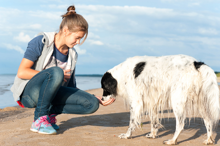 Young teenage girl treats her lovely dog sitting at summer beach. Colored vibrant horizontal outdoors image.