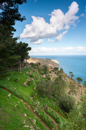 Spectacular view of italian pine woodland mountain and sea with cloudy blue sky. Colored summertime outdoor vertical image.