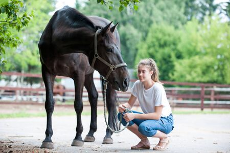 Black horse gazing away close to her owner - young teenage girl at ranch after training. Vibrant multicolored summertime outdoors horizontal image. Banco de Imagens