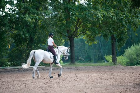 Training process. Young teenage girl riding trotting gray horse on sandy arena practicing at equestrian school. Colored outdoors horizontal summertime image with filter. View from backside Reklamní fotografie