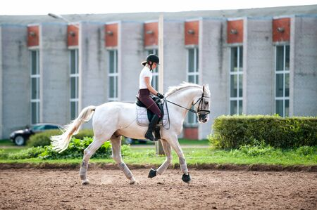 Training process. Young teenage girl riding gray galloping horse on sandy arena practicing at equestrian school. Colored outdoors horizontal summertime image with filter