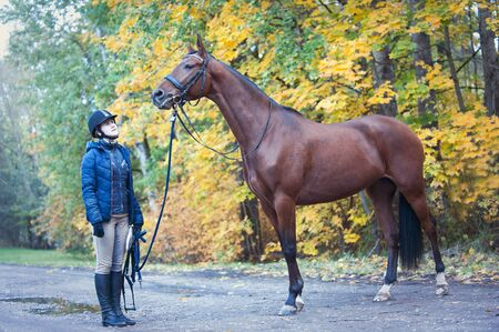 Young lady equestrian standing close to her favorite chestnut horse. Colored outdoors horizontal  image with filter, autumn background Reklamní fotografie