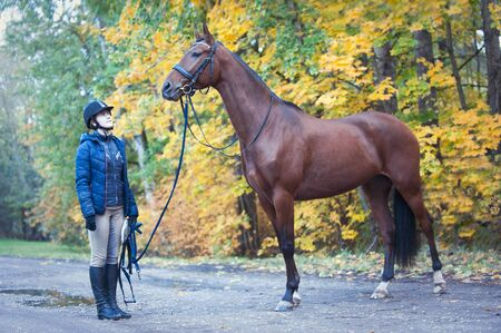 Young lady equestrian standing close to her favorite chestnut horse. Colored outdoors horizontal image with filter, autumn background