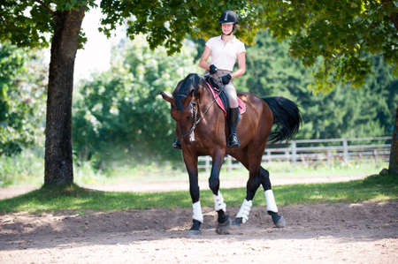 Teenage girl equestrian riding horseback on arena at sport training. Vibrant multicolored outdoors horizontal image. Standard-Bild