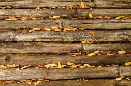 Old Bamboo Background Stock Photo - 13134987