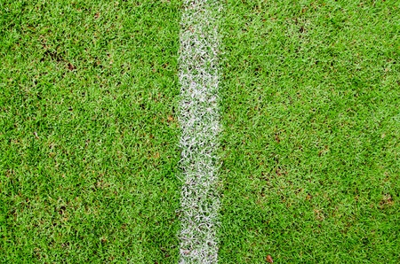 Freshly green football field with a vertical white line