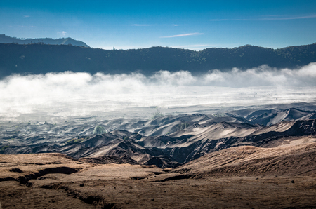 Dry land with dry bush and mist near Mount Bromo, Indonesia
