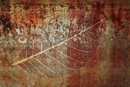 Leaf fossil montage design elements