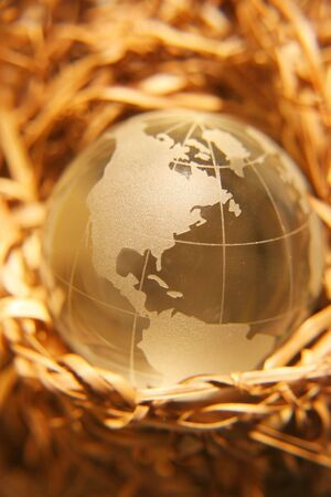 Globe in nest. Concept representing secure world. Stock Photo