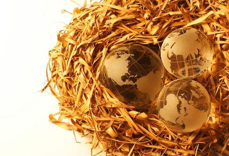 Closeup di tre globi su un nido che rappresentano diversi continenti sotto protezione