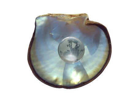 Globo di cristallo di ostriche a guscio, argento bluastra versione-concetto