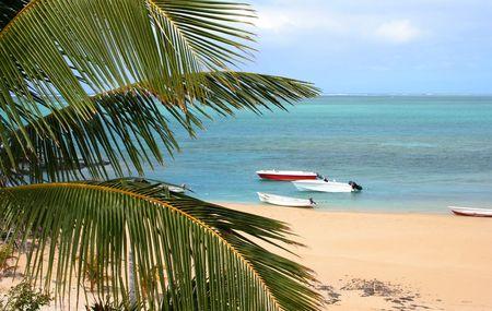 Vista della spiaggia da localit� Archivio Fotografico
