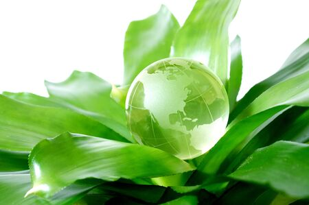 Globe on plant representing environmental protection concept US Version Stock Photo