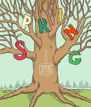 big tree: Bright doodle typography poster with big tree. Cartoon cute card on seasonal theme with lettering text - Spring is coming. Hand drawn vector illustration isolated on white background.