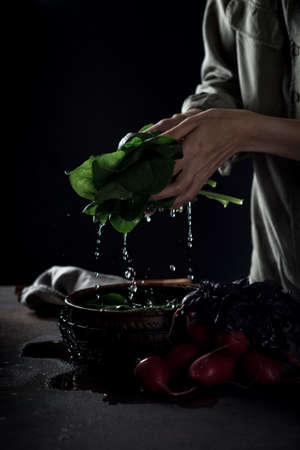 Female hands hold wet greens at a bowl of water. Close-up shot 版權商用圖片