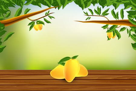 Wooden Floor with Mangos and Nature Background Vector illustration