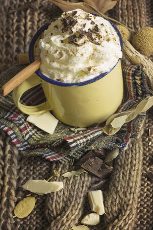 hojas: old metal mug with hot chocolate ,  sobre colchon de hojas secas, aspecto invernal