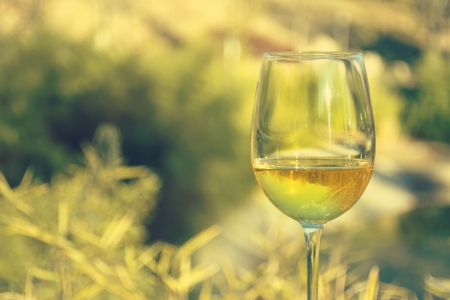 field glass: glass of white wine, wooded landscape,horizontal image