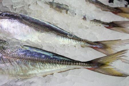 fisch eis: Detail der Fische, Eis Fischmarkt Lizenzfreie Bilder