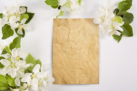 Old crumpled paper with white flowers white background