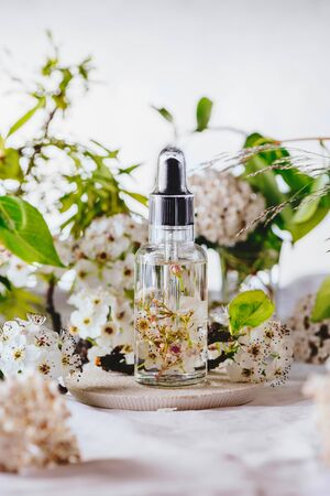 Essential oil, with fresh white flowers of cherry, on green leaves background
