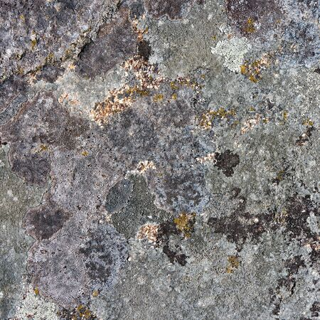 Coarse and brute natural granite stone texture with cracks, moss and sharp edges. Gray and light brown tones.