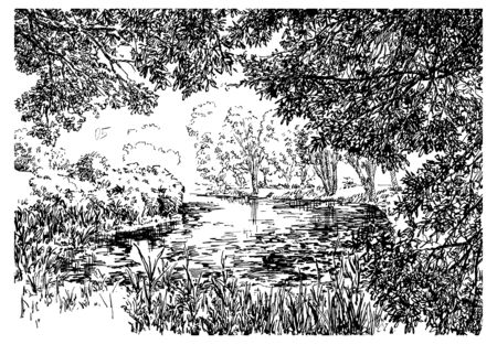 Pond in the japanese garden. Black and white hand drawing with pen and ink. Engraving, etching, sketch style.