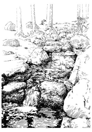 Creek with stones in the japanese garden. Black and white hand drawing with pen and ink. Engraving, etching, sketch style.