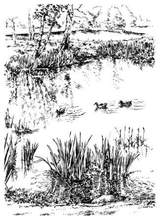 Ducks and trees and water in the garden. Black and white hand drawing with pen and ink. Engraving, etching, sketch style.