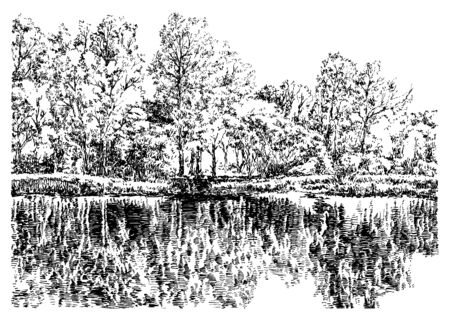 Trees reflected on the water in the garden. Black and white hand drawing with pen and ink. Engraving, etching, sketch style.