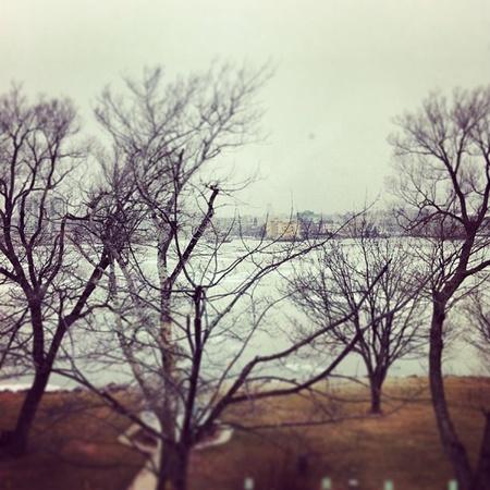 lakeview: Frozen Lakeview of Lake Ontario in Kingston