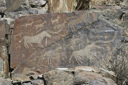 Hunting of prehistoric man photo
