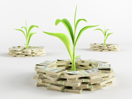 Green sprout surrounded by a stack of money