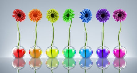 Flowers in laboratory flasks with liquids of different colors