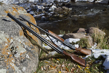 Two guns lying on a rock on a background of autumn landscape