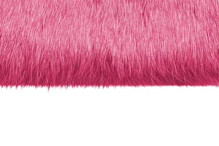 pink fur: Macro picture of pink fur for backgrounds
