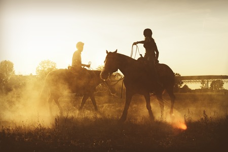 beautiful horse: Picture of horsemas riding a horse in the evening.