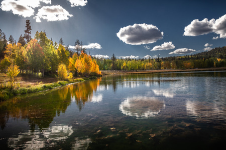 Gorgeous autumn view of the mirror lake of Duck Creek in Dixie National Forest near Cedar Breaks National Monument in Sothern Utah, USA. Zdjęcie Seryjne