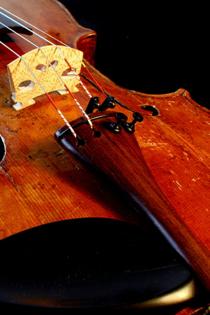 fiddle: fiddle Stock Photo