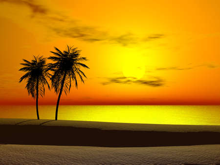 Silhoutte of two palms at sunrise Stock Photo - 2668687