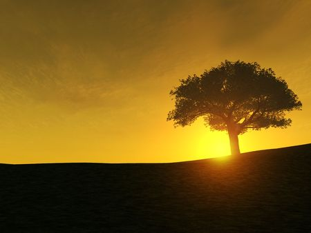 rest in peace: A tree on a hill during sunset. Stock Photo