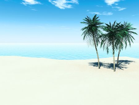 A sunny tropical beach with three palm trees.