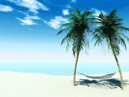A hammock between two palmtrees on the beach with the ocean in the 