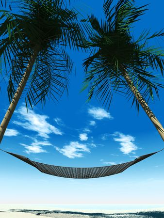 A hammock between two palmtrees on the beach with the ocean in the  background on a sunny day. photo