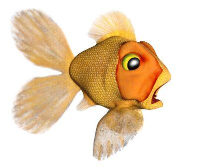 A cartoon goldfish looking very terrified. photo
