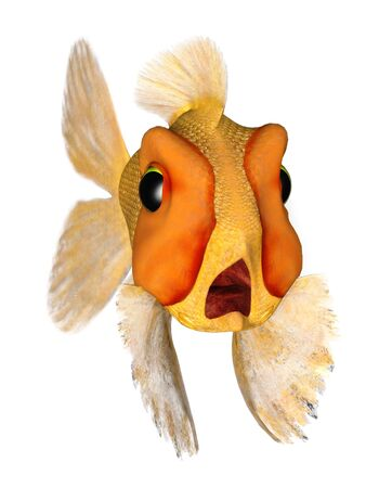 terrified: A cartoon goldfish looking very terrified.