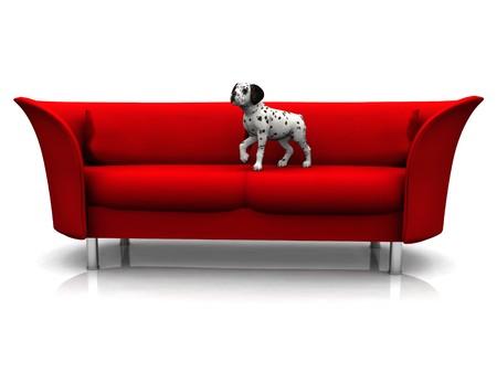 dalmation: A cute dalmatian puppy in a red sofa. Stock Photo
